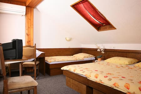 Private triple room*** 1, free parking, free wifi - Medvode - Bed & Breakfast
