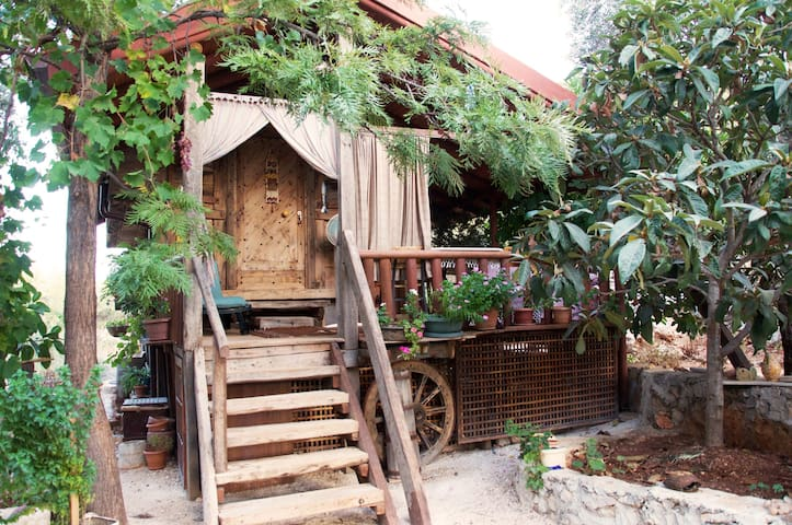 Rustic Treehouse with Private Beach - Kaş - 獨棟