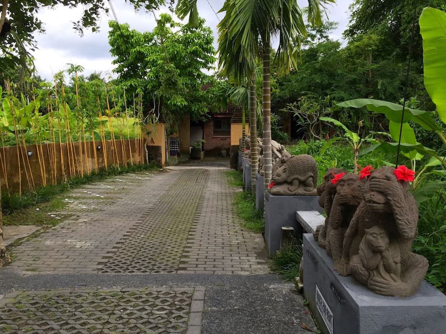 A tropical oasis awaits you tucked away, just steps from a main road...