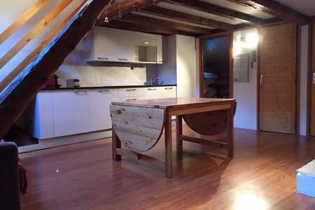 Le loft, duplex de charme 5 à 7 pax - La Salle Les Alpes