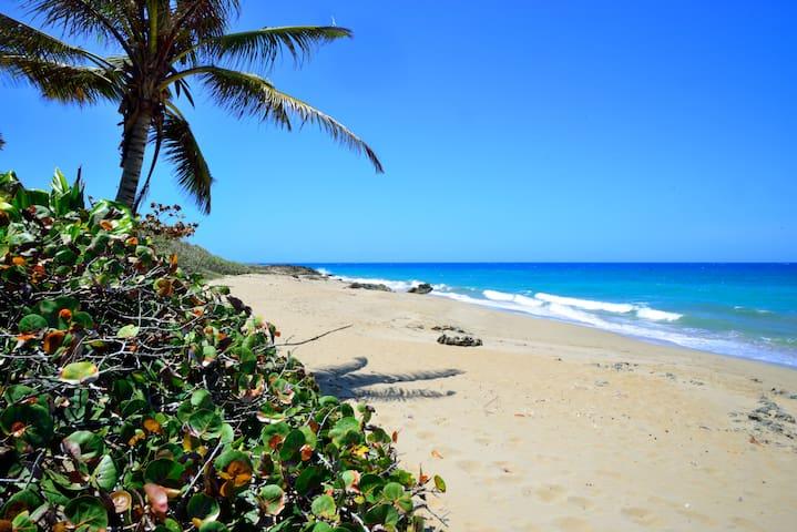 Seas the Moment! Private Beach Area - Cabarete - Condomínio