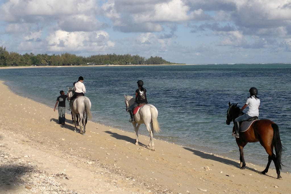 Horse riding on the beach in front of the property