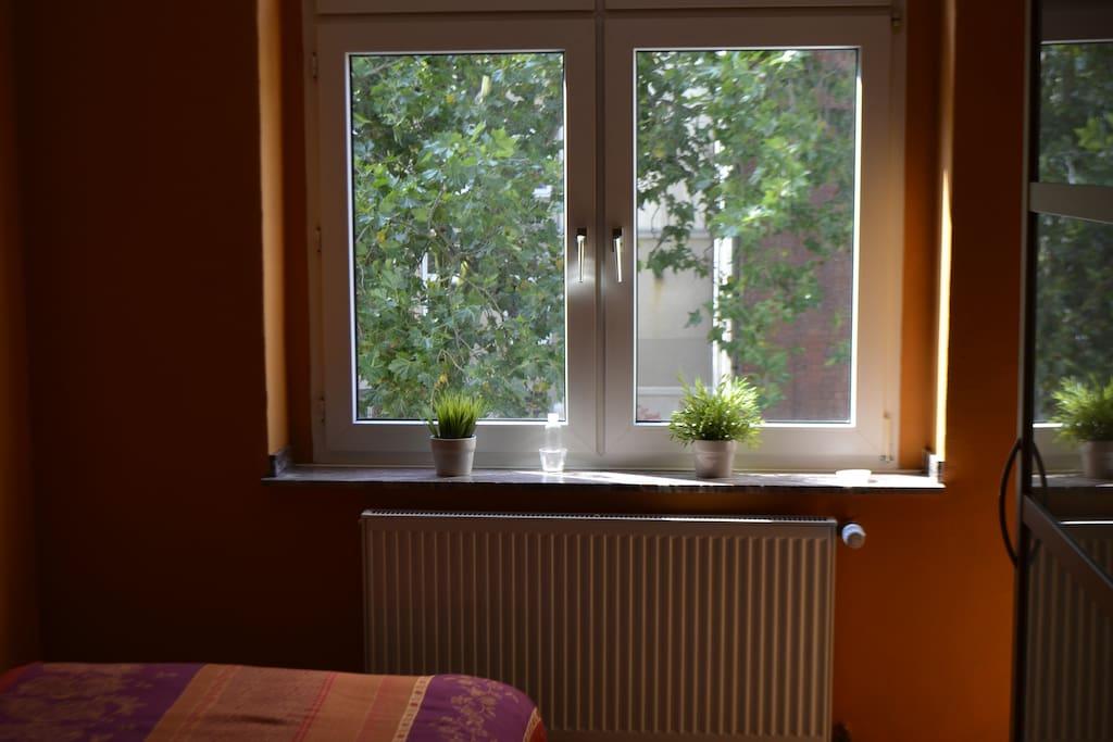 Fenster Schlafzimmer