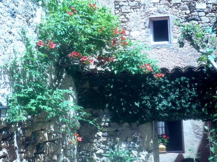 Beautiful House with a Secret Garden