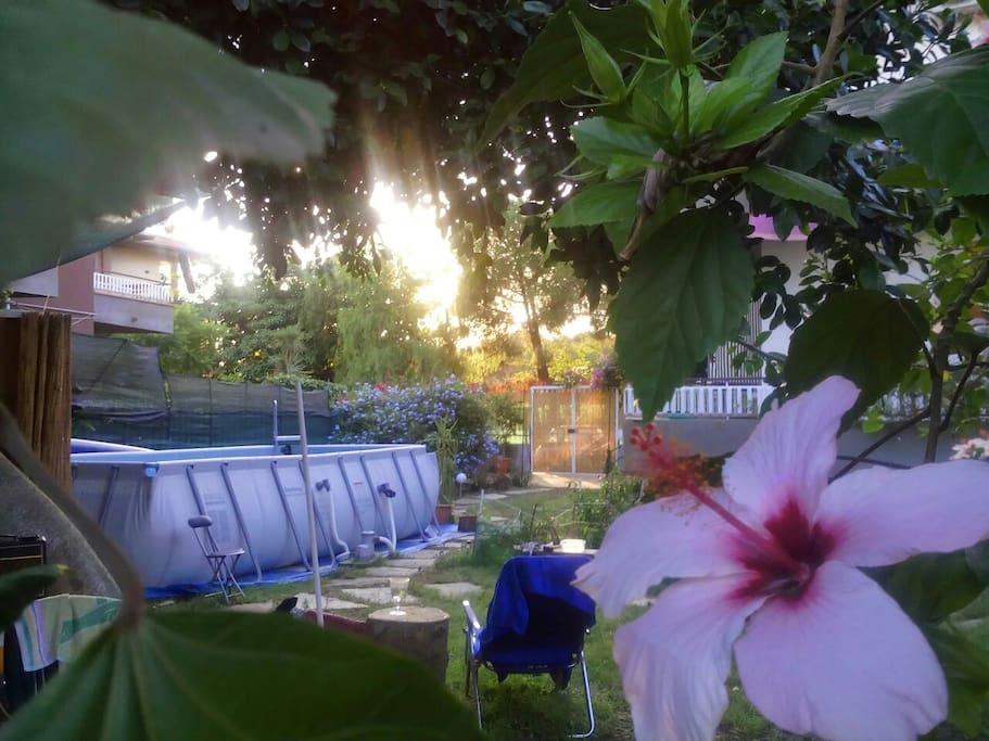 giardino con cucinotto esterno