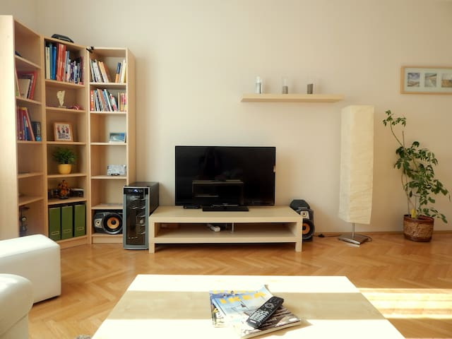 Comfortable and spacy apartment (54sqm)