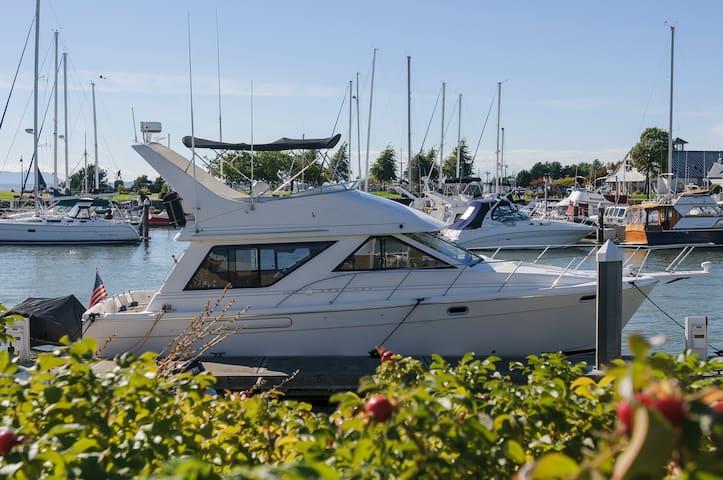 40' Motor Yacht Bareboat Charter