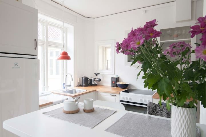 Nice apartment in the city center - København - Flat