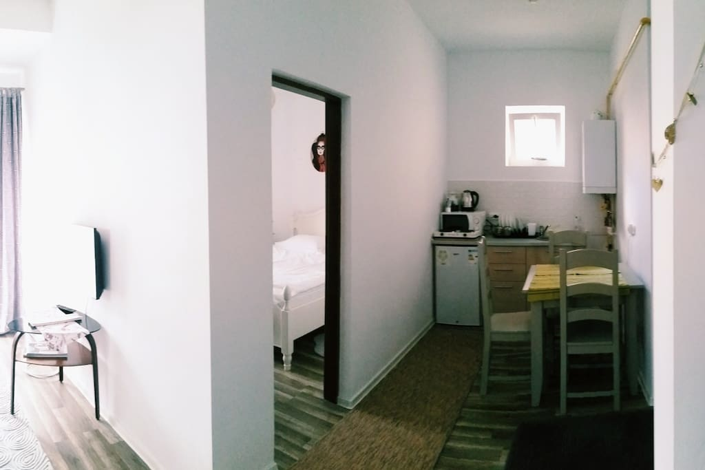 full view of the apartment