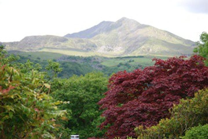 Lovely Double bedroom £60 per night - Capel Curig - House