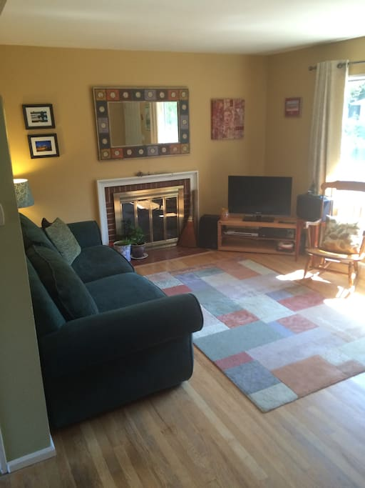 Sunny living room with fireplace, flat screen TV, DVD, stereo.