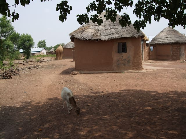 Stay in North-Ghanaian hut (Duu)
