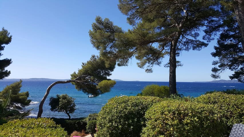 Studio acces direct a la plage - Rayol-Canadel-sur-Mer - Appartement