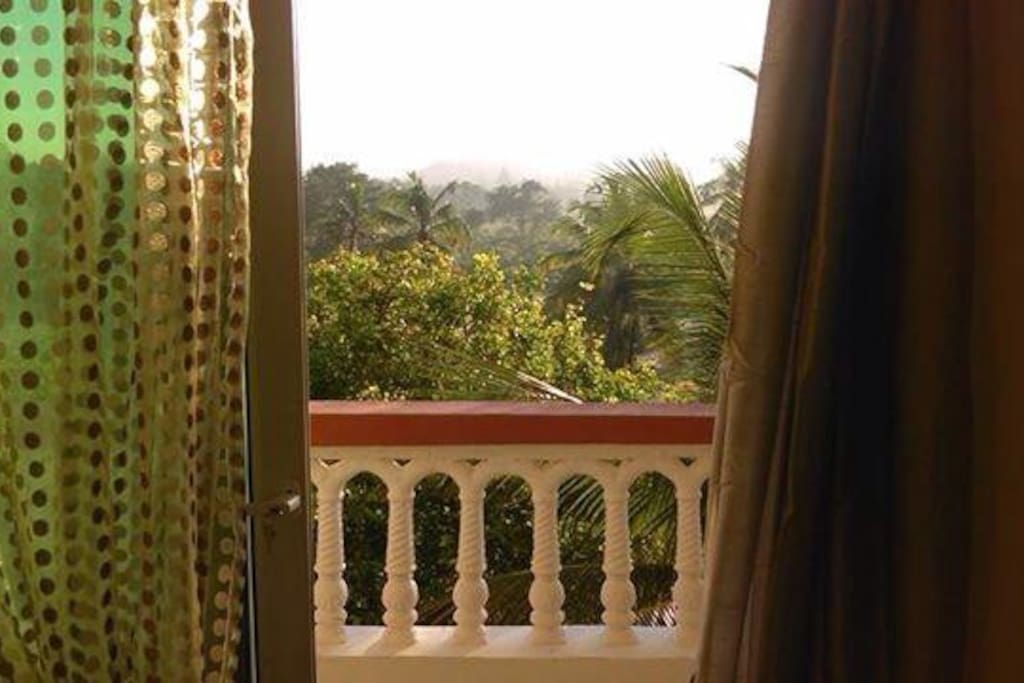 Balcony with an elegant view of the haller butterfly  park