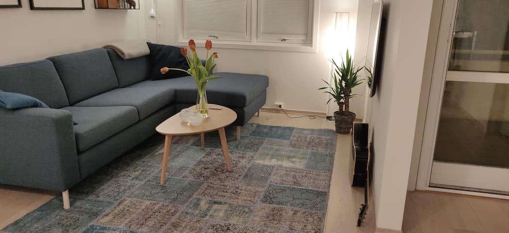 Modern apartment centrally located at Grunerløkka