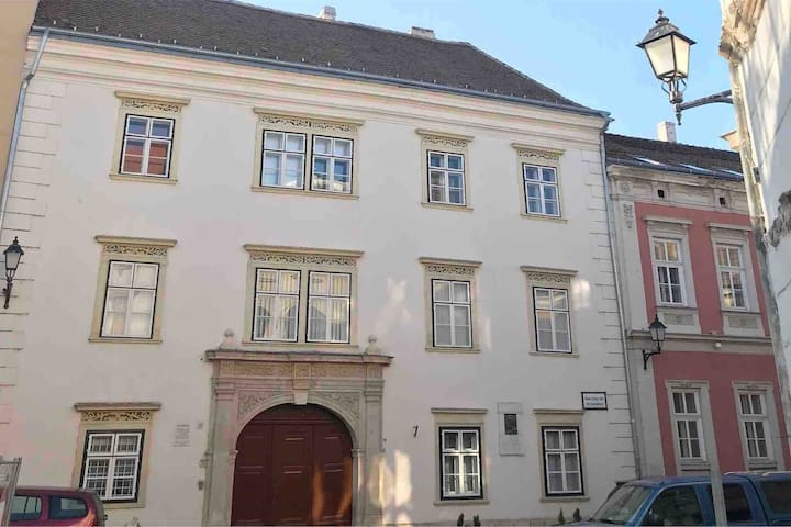 Charming home in the historic downtown of Sopron