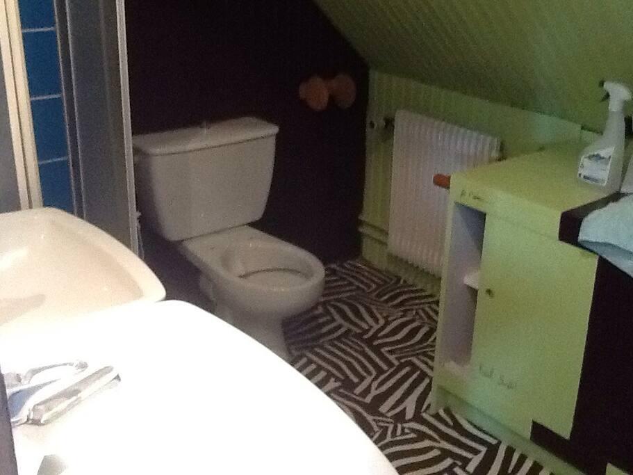 Salle de douche et WC attenant