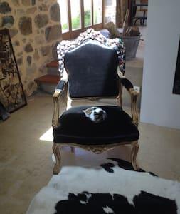 maison de campagne en pierre - Poule-les-Écharmeaux