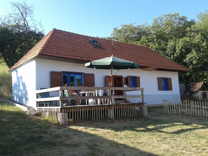 Vakantiehuis in Jedlove Kostolany, Slowakije