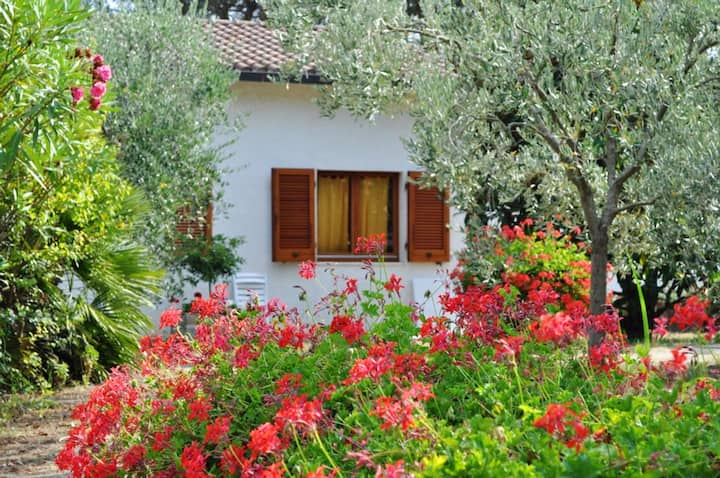 Casa de 3 habitaciones en Lacona, con terraza amueblada - a 100 m de la playa