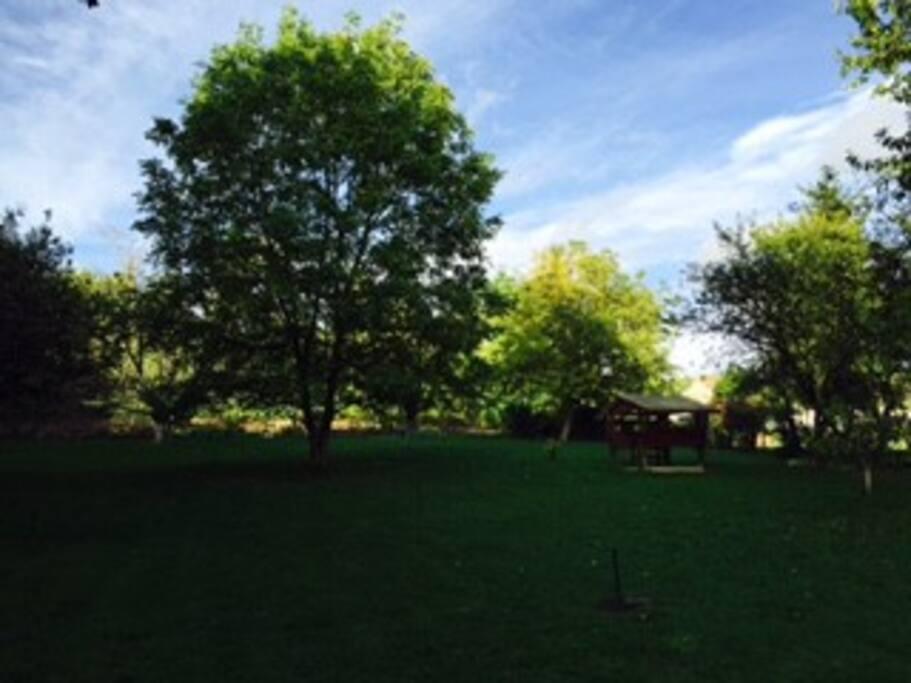 Charmant Appartement Au Milieu De La Verdure Flats For
