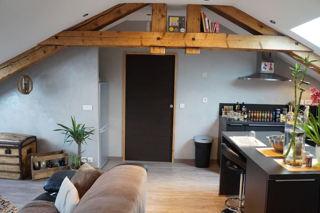 Appartement type loft lofts louer nancy for Appartement type loft