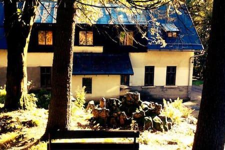 Mountain chalet Barbora - Lučany nad Nisou - Bed & Breakfast