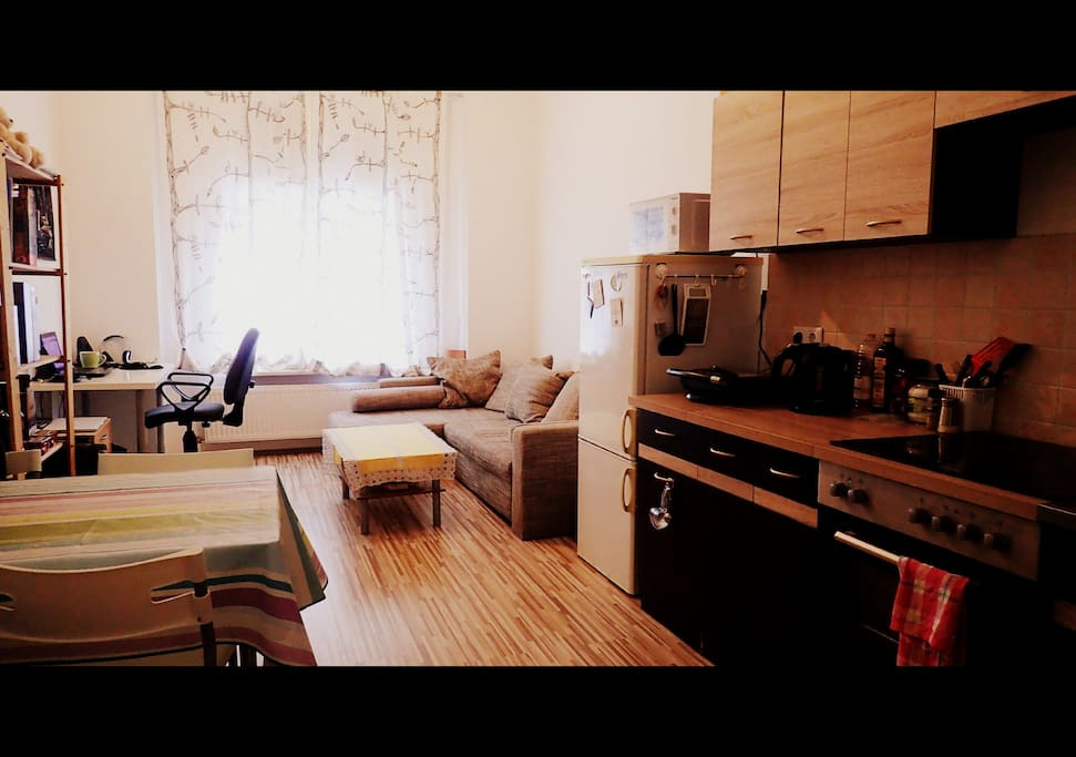 Living room and kitchen in a shared space