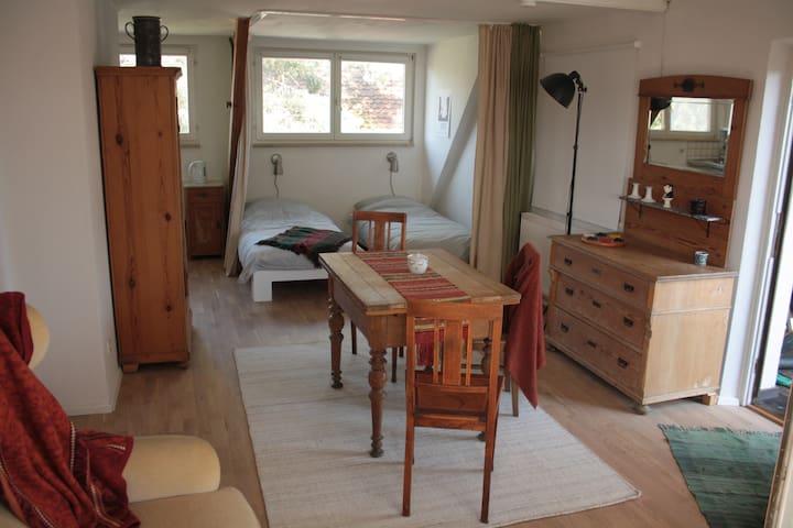 Studio zur Pegnitzaue - Reichenschwand - Apartment