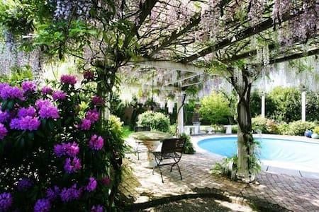 Cosy Villa - De Punt