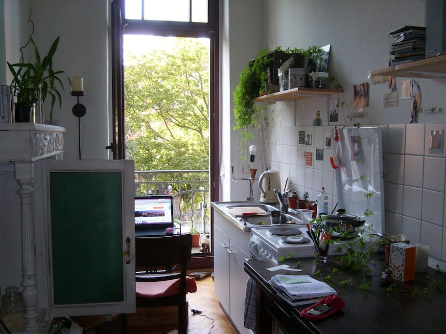 kitchen like a winter garden