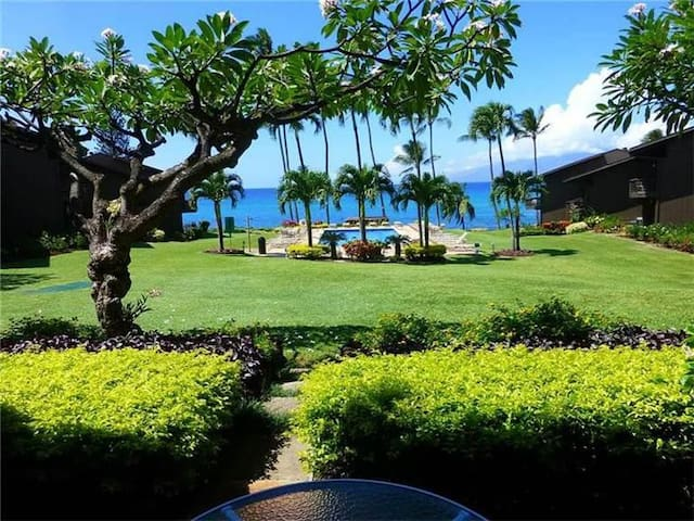 Ocean View - Mahina Surf 115 (One Bedroom One Bath Oceanfront) - Napili-Honokowai - Byt