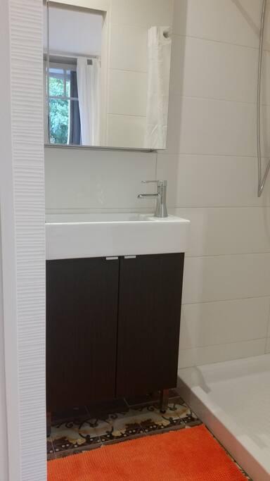 salle d'eau attenante à la chambre
