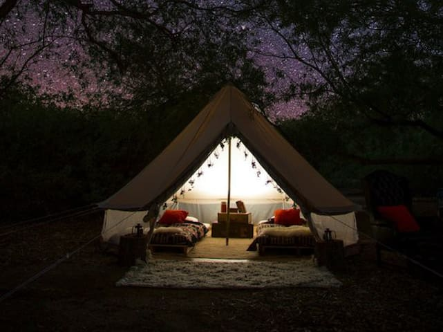 Farm-stay Glamping Bordering Nat'l Forest