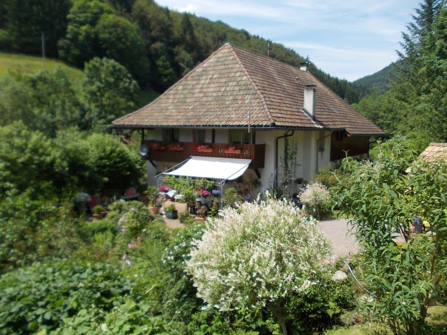 holiday cottage flats for rent in b rchau kleines wisental black forest baden w rttemberg. Black Bedroom Furniture Sets. Home Design Ideas