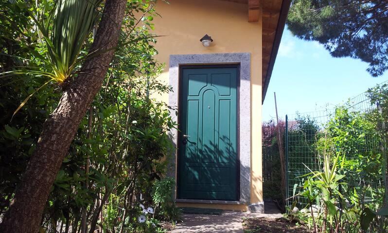 The main door