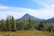 Med Krossobanen kommer man opp på fjellet.