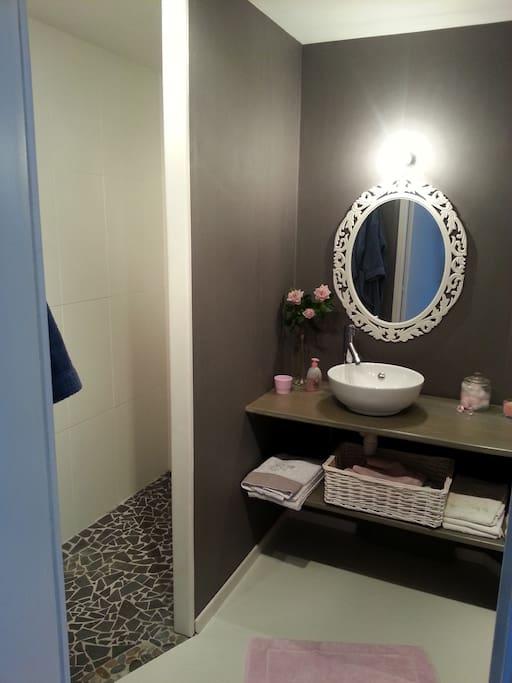 chambre chez particulier maisons louer sainte gemmes d 39 andign. Black Bedroom Furniture Sets. Home Design Ideas