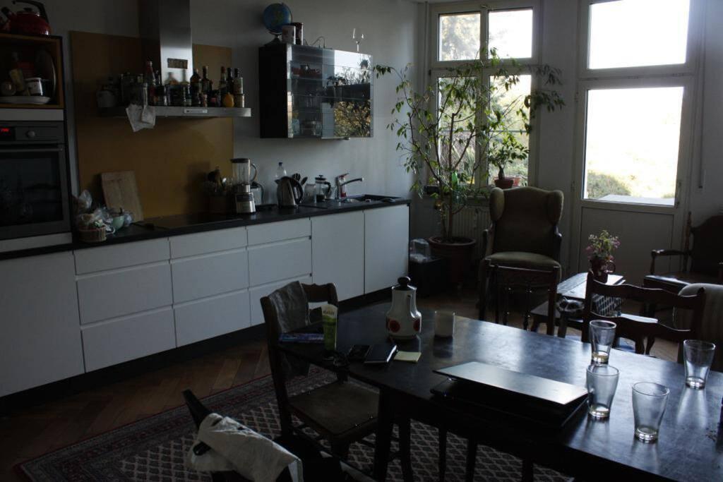 Unsere Wohnküche mit Blick in den Garten
