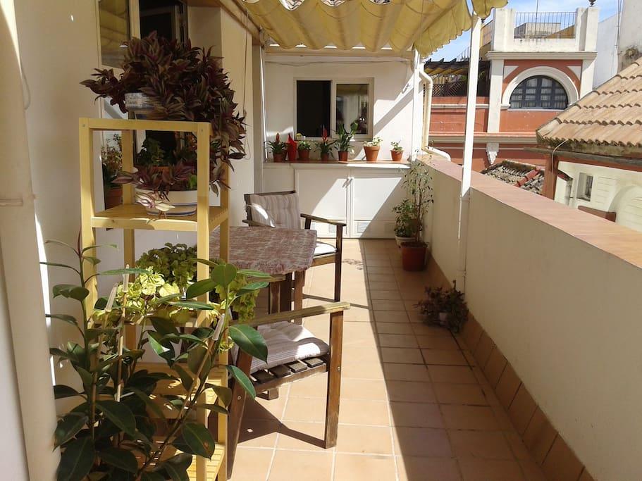 Terrace.-Terraza