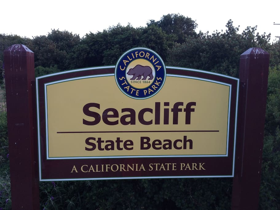 One of Santa Cruz county's best and most family friendly beaches.