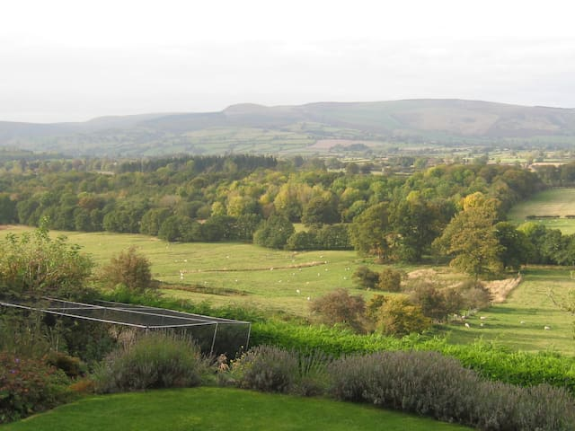 A glorious Mid-Wales rural retreat - Old Radnor - (ukendt)
