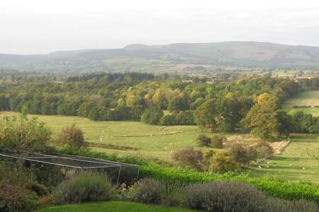 A glorious Mid-Wales rural retreat - Old Radnor