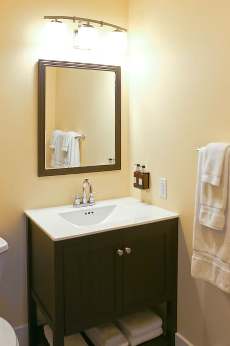 Bathroom supplied with liquid soap, shampoo, conditioner, and lotion