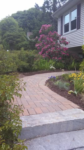 Front entry garden walkway with Roses that bloom until late Autumn