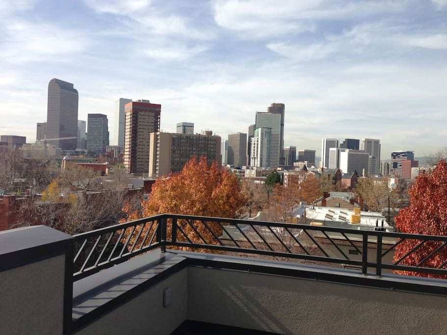 City View in the Fall