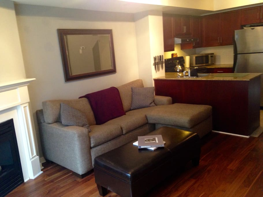 Modern 2 BR Apt In Queen West Apartments For Rent In Toronto Ontario Canada