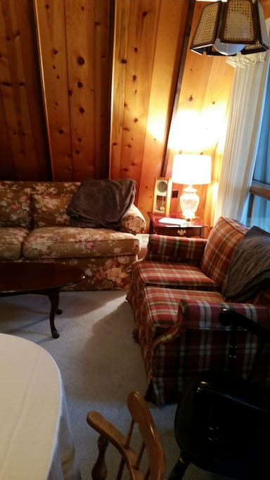 Living room with Ethan Allen sofa and love seat