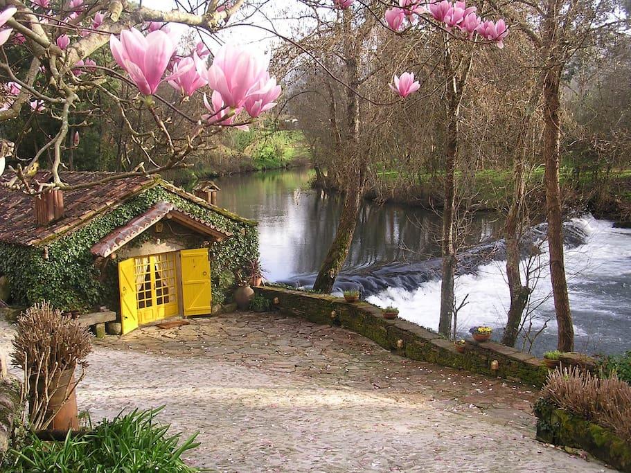 Sua casa na margem do rio