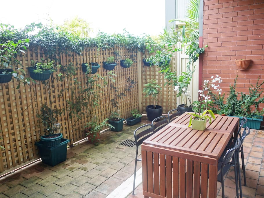 Large courtyard with extendable table that seat 10, lemon tree, curry tree and dozens of herbs!
